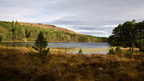 cairngorms oct17 135